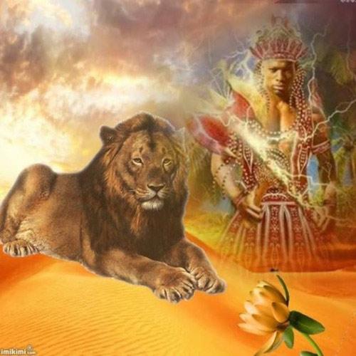 achango-e-il-leone